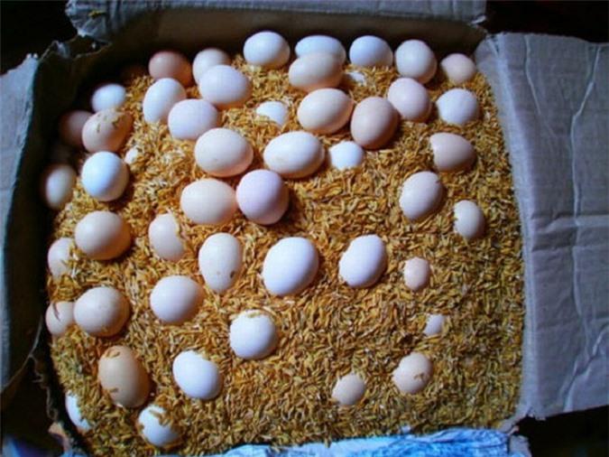 Cách bảo quản trứng vịt, trứng gà, trứng muối trong thời gian dài không lo bị hỏng - Ảnh 2