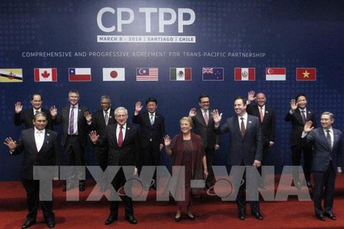Hiệp định Đối tác Toàn diện và Tiến bộ xuyên Thái Bình Dương (CPTPP) chính thức được ký kết tại Chile, ngày 8/3/2018. Ảnh: TTXVN .