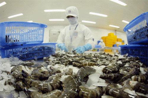 Việt Nam là nguồn cung tôm lớn nhất cho Hàn Quốc. (Ảnh minh họa: Dân trí)