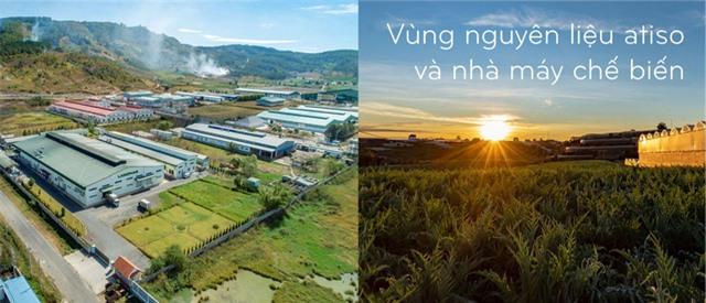 Chuyện làm kinh tế xanh ở xứ sở mộng mơ - Ảnh 2.