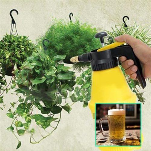 Thực hư việc dùng bia tưới cho cây trồng cho năng suất cao và cây phát triển khỏe mạnh - 2