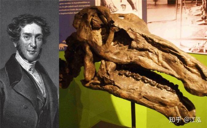 Phát hiện loài cá kiếm cổ đại với hàm răng sắc nhọn ngoại cỡ - Ảnh 2.