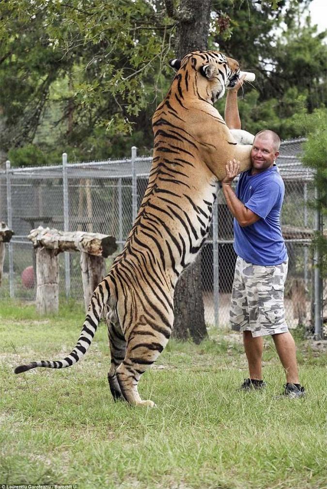 10 khoảnh khắc cho thấy con người bé nhỏ đến thế nào trước động vật hoang dã - Ảnh 17.
