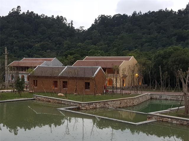 Làng nằm ngay dưới chân Yên Tử, phía sau là những cánh rừng bạt ngàn