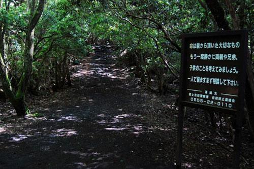 Tấm biển nhắc nhở đặt ngay lối vào Hải Lâm (Aokigahara forest) nhằm đề nghị du khách chớ liều mình.