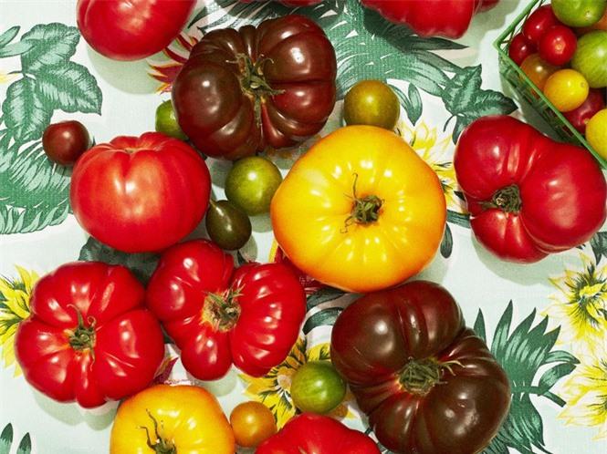 Những 'đại kỵ' khi ăn cà chua không phải ai cũng biết - ảnh 1
