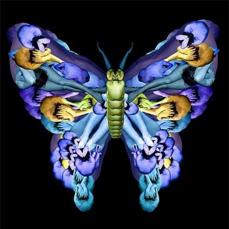 Hình một con bướm khổng lồ được tạo nên từcác người mẫu khỏa thân.