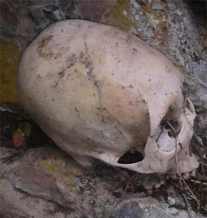 Choáng: hài cốt người trong mộ hang động có hộp sọ như của loài khác - Ảnh 2.