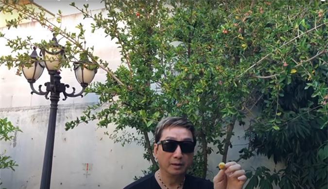 Khu vườn của ca sĩ Trường Vũ, có những cây trên 20 năm tuổi - Ảnh 10.