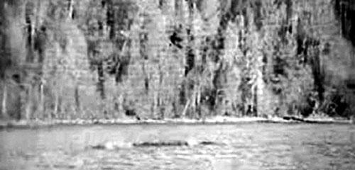 """Quái vật"" hồ Kanasi xuất hiện"
