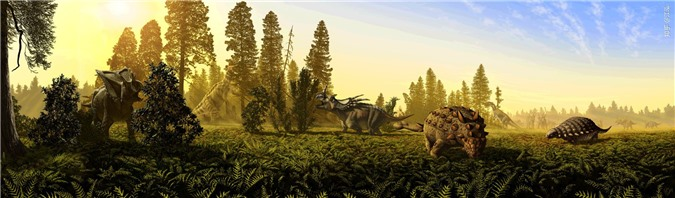 Canada phát hiện ra loài khủng long bay mới, có kích thước tương đương một chiếc máy bay nhỏ - Ảnh 8.