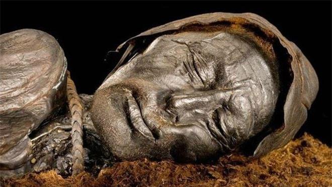 Biểu cảm kỳ lạ trên khuôn mặt của xác ướp đầm lầy Tollund Man.Ban đầu, cảnh sát và các chuyên gia còn cho rằng xác ướp thuộc về một nạn nhân bị sát hại trong vụ án mạng gần đây.