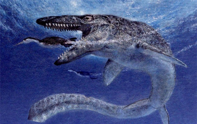 Bí mật loài rắn có chân: Hậu duệ chung tổ tiên với quái thú bá chủ đại dương Thương long? - Ảnh 5.