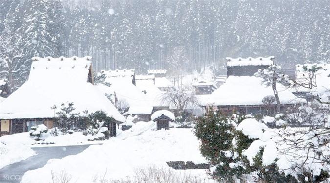 Ngôi làng mái tranh hàng trăm năm tuổi ở Nhật Bản