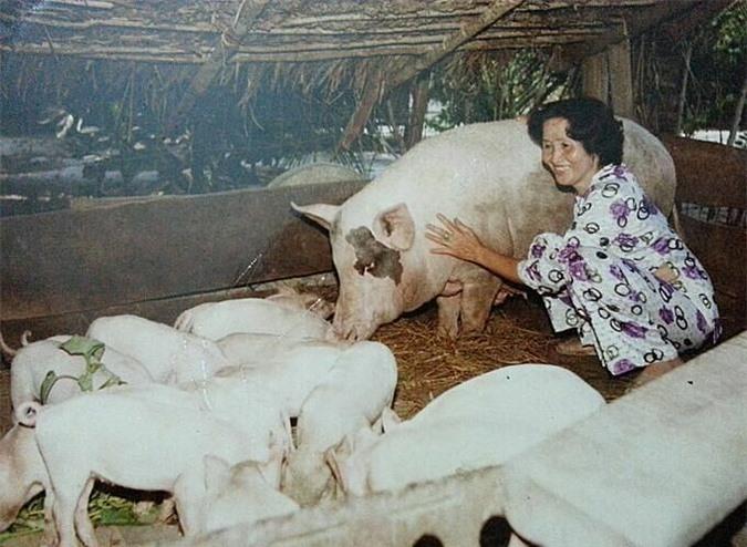 Ảnh thời trẻ còn làm lũ của mẹ Dương Triệu Vũ.