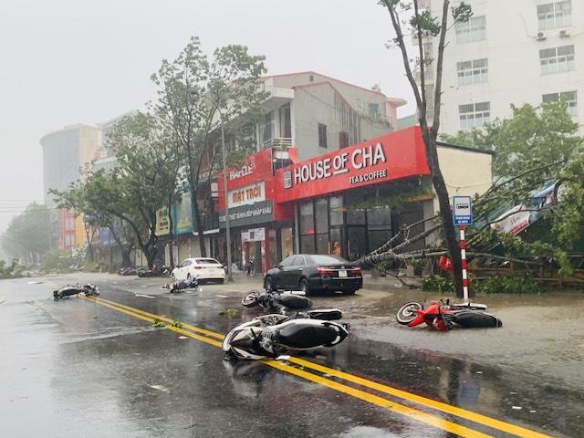 Thừa Thiên Huế: Nhà cửa tốc mái, cây đổ hàng loạt do bão số 5