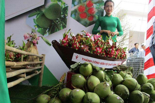 Lợi thế hơn 'đối thủ', rau quả Việt ồ ạt xuất châu Âu