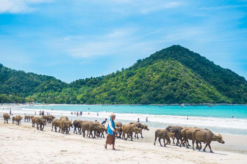 9. Bãi biển Selong Belanak, Indonesia.