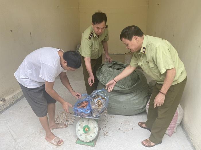 Công chức Tổ QLĐB huyện Lộc Bình kiểm đếm số tang vật vi phạm, ảnh: Chu Hà.