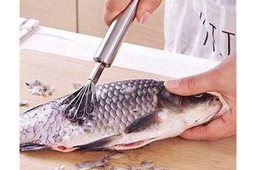 Nghiên cứu của nhiều nhà dinh dưỡng đã cho thấy trong vảy cá chứa chất lecithin.