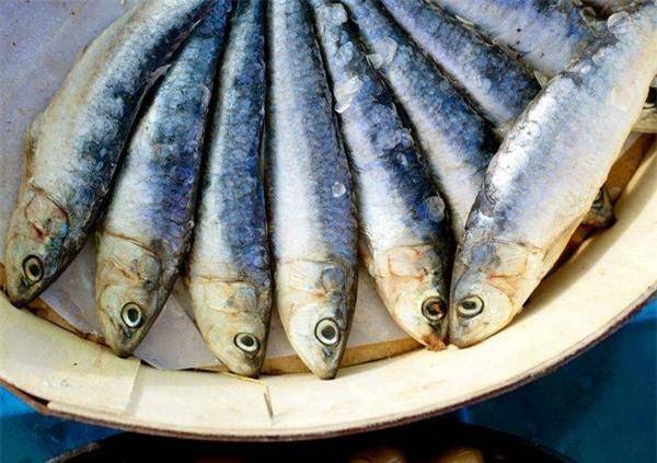 Không cho con ăn cá ướp muối nhiều