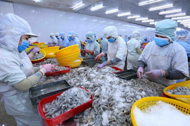 Xuất khẩu cá tra sang Anh tăng mạnh