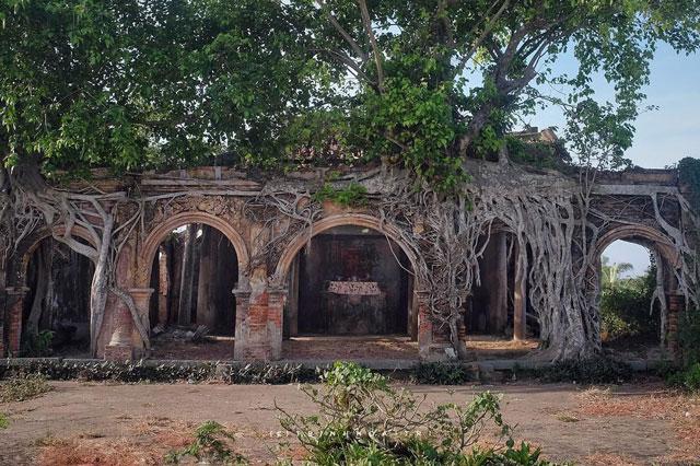 Tận mục ngôi đình hơn 100 tuổi nằm dưới bộ rễ cây bồ đề tại Tiền Giang