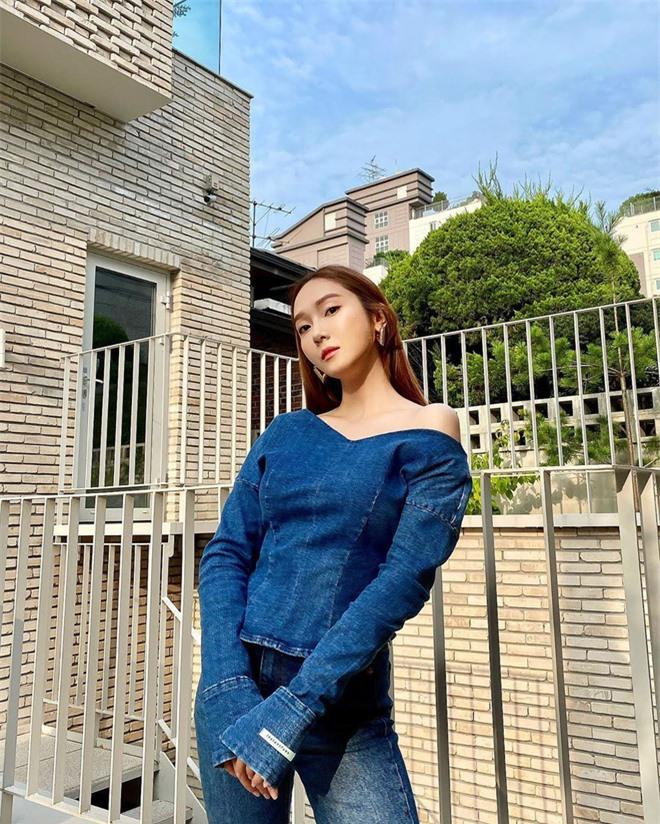 Jessica nhắc fan tìm kiếm manh mối về SNSD trong SHINE: Fan Hàn tức điên lên chê ai rảnh? - Ảnh 2.