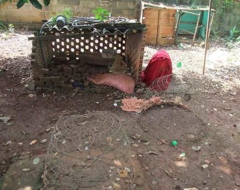 Trộm gà không được liền hãm hiếp chủ nhà khiến nạn nhân tử vong