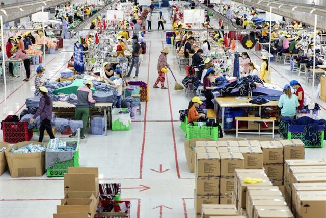 Fitch Solutions: Kinh tế Việt Nam đang trên đà phục hồi - Ảnh 1.