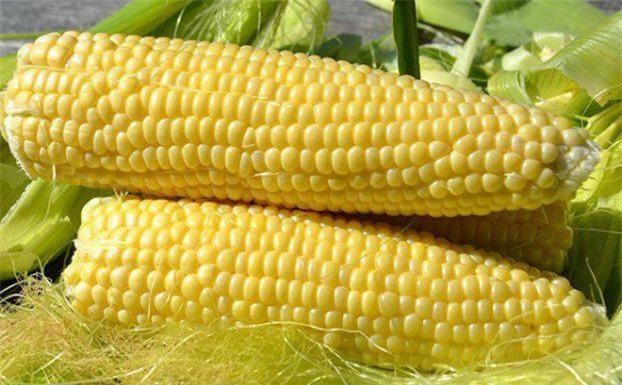 5 loại rau củ gây tăng cân vù vù không kém gì thịt, cá, hạn chế ăn kẻo béo phì - ảnh 4
