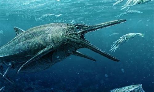 Đồ họa tái hiện quái vật biển trong quan tài đá.