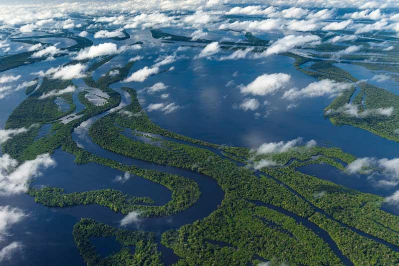 1. Sông Amazon (Nam Mỹ).