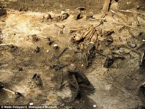 Có tổng cộng 380 bộ hài cốt được tìm thấy. Ảnh: Daily Mail