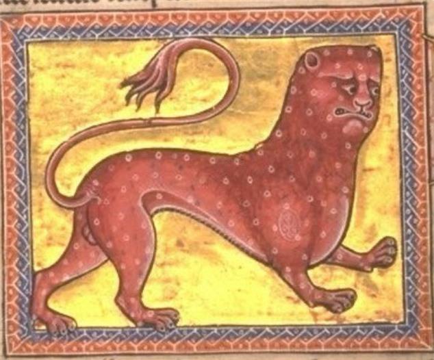 Khi họa sĩ thời Trung Cổ trổ tài vẽ lại động vật qua lời kể, con nào cũng sai trái hết hồn luôn - Ảnh 11.