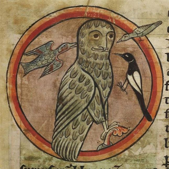Khi họa sĩ thời Trung Cổ trổ tài vẽ lại động vật qua lời kể, con nào cũng sai trái hết hồn luôn - Ảnh 12.
