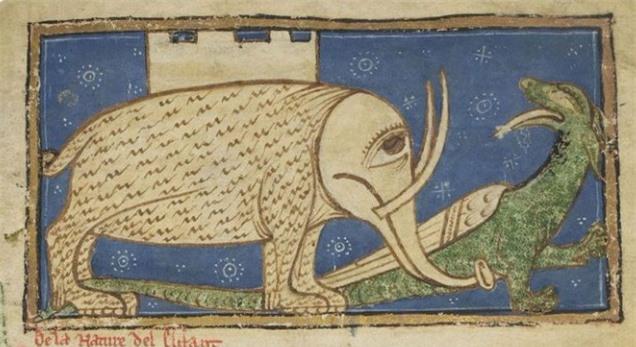 Khi họa sĩ thời Trung Cổ trổ tài vẽ lại động vật qua lời kể, con nào cũng sai trái hết hồn luôn - Ảnh 8.