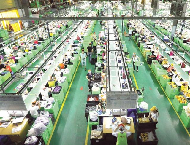 Quý III/2020, thị trường lao động có dấu hiệu phục hồi - Ảnh 2.