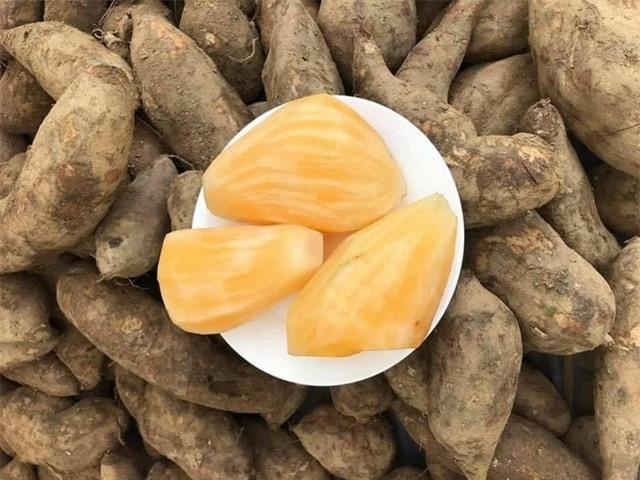 Hà Nội: Chị em mê tít đặc sản Lào Cai giá rẻ như khoai - 4