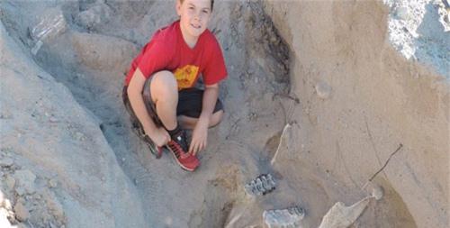 Cậu bé 9 tuổi tìm ra bộ xương hóa thạch 1 triệu năm tuổi - 1