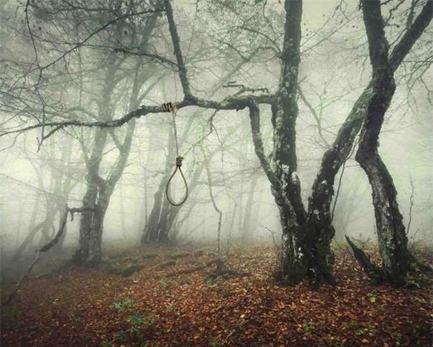 Khu rừng tự sát Aokigahara: Nơi tăm tối và im lặng tuyệt đối với những câu chuyện rùng rợn đầy ám ảnh - Ảnh 3.