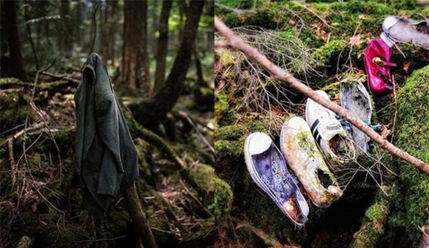 Khu rừng tự sát Aokigahara: Nơi tăm tối và im lặng tuyệt đối với những câu chuyện rùng rợn đầy ám ảnh - Ảnh 4.