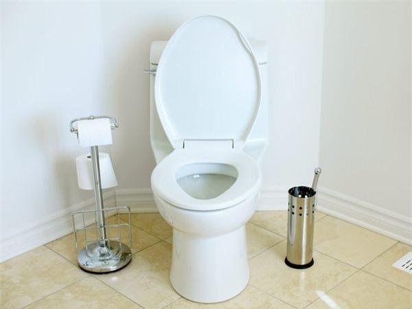Vào thời kỳ sơ khai, nhà vệ sinh được xem là 1 phát minh mới