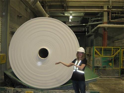 Cuộn giấy vệ sinh lớn nhất thế giới là do hãng Charmin sản xuất