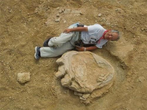 Phát hiện dấu chân khủng long khổng lồ tại Mông Cổ - 1