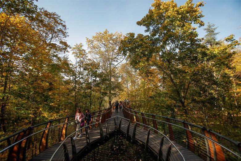 Mọi người đi bộ trên cây cầu trong rừng trong thời tiết nắng ấm mùa thu ở Moscow, Nga ngày 6/10.