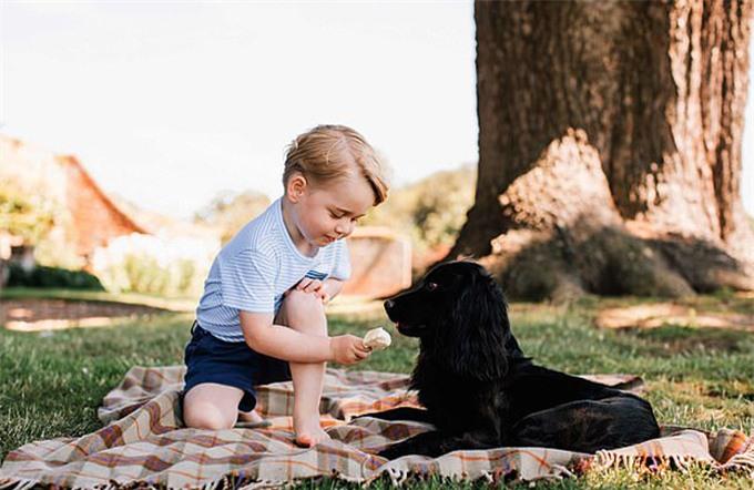 Lupo xuất hiện trong ảnh mừng sinh nhật 3 tuổi của George hồi năm 2016. Ảnh: Instagram.