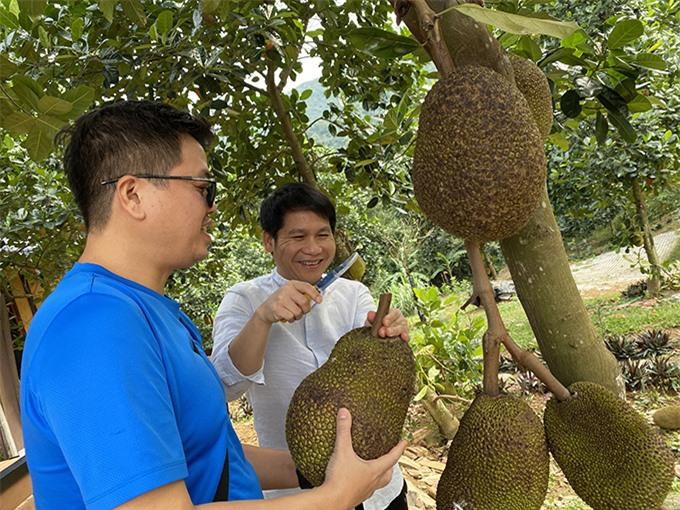 Đăng Dương và Trọng Tấn rủ nhau tìm mít chín để làm chiến lợi phẩm mang về thành phố, sau một ngày miệt mài luyện tập và thăm quan trang trại của Việt Hoàn.
