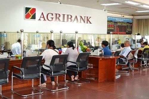 Có 100.000 tỷ đồng, nông nghiệp công nghệ cao vẫn 'đói vốn'?