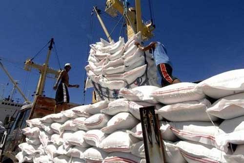 Giá gạo Việt Nam cao kỷ lục